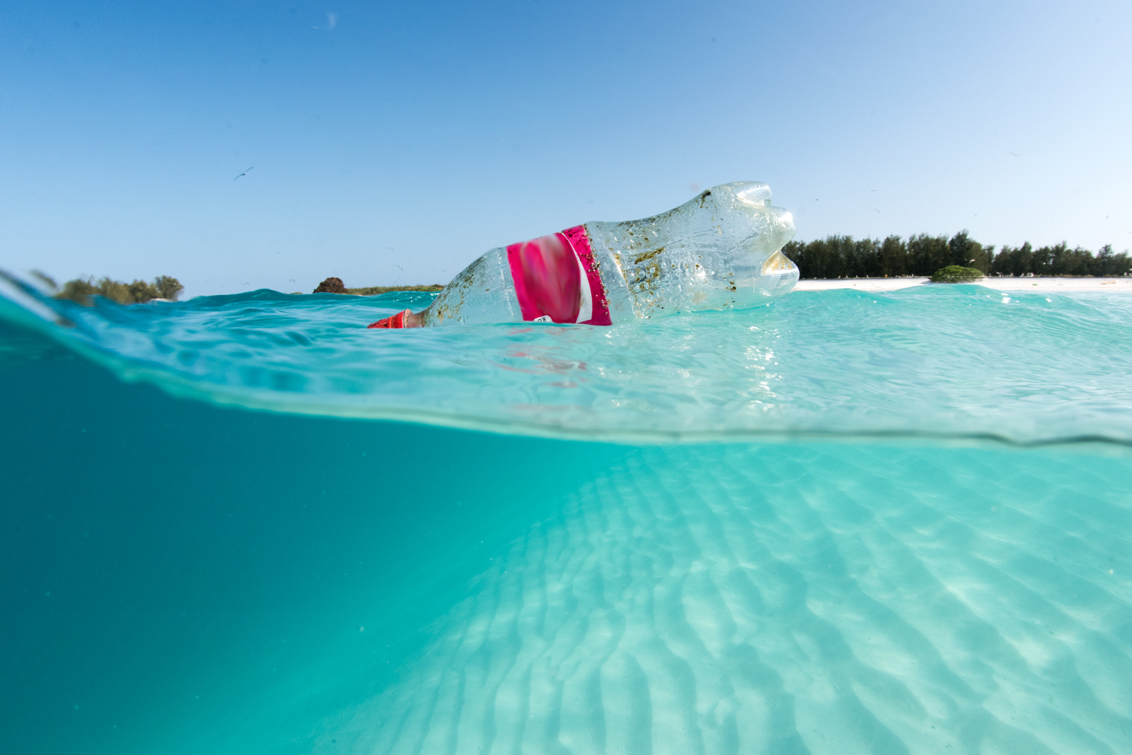 The Ins and Outs of Plastic Pollution in our Ocean   OR&R ...