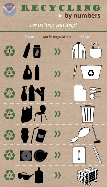 Infographic showing the various types of plastics and what they can be turned into after recycling.