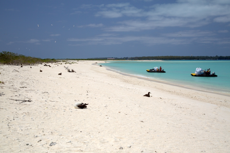 A beautiful white sand beach with two boats full of bags of debris offshore.