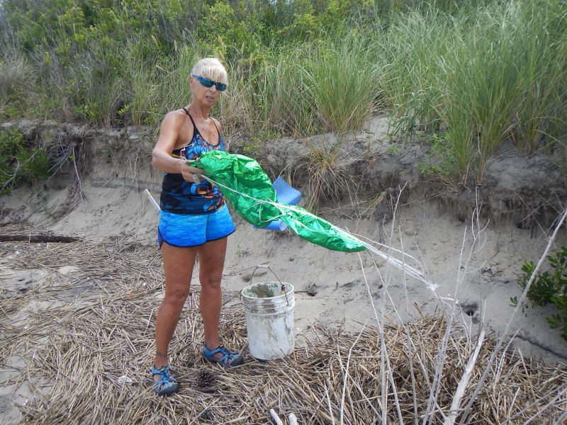Volunteer removes balloon debris from beach.