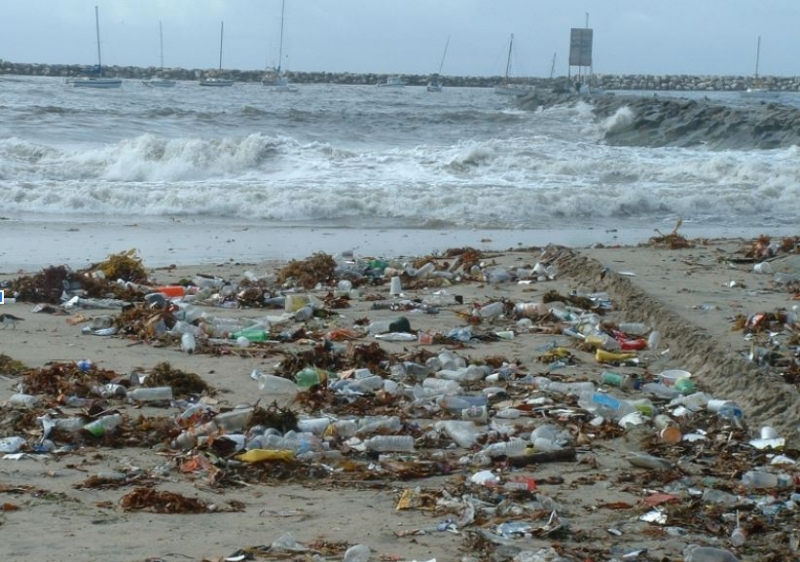 A beach in California is nearly covered in plastic, marine debris.
