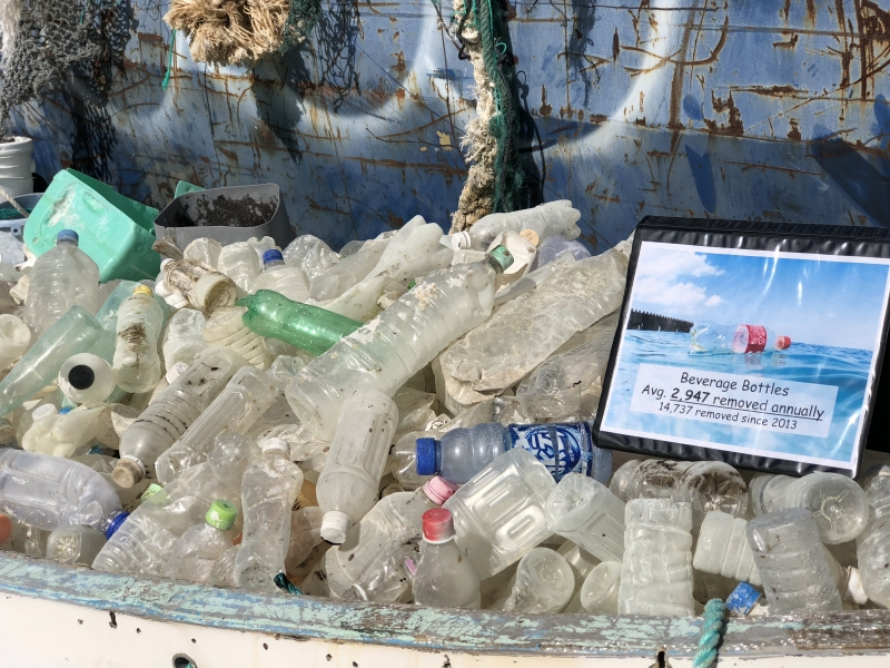 Single-use bottles collected from the Northwestern Hawaiian Islands.