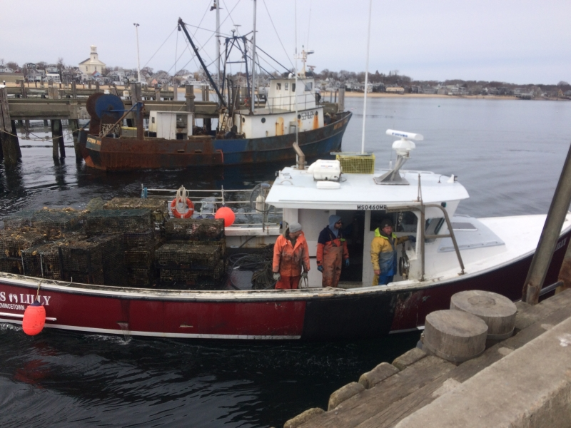 A boat loaded up with derelict lobster traps with three people on board in a harbor.