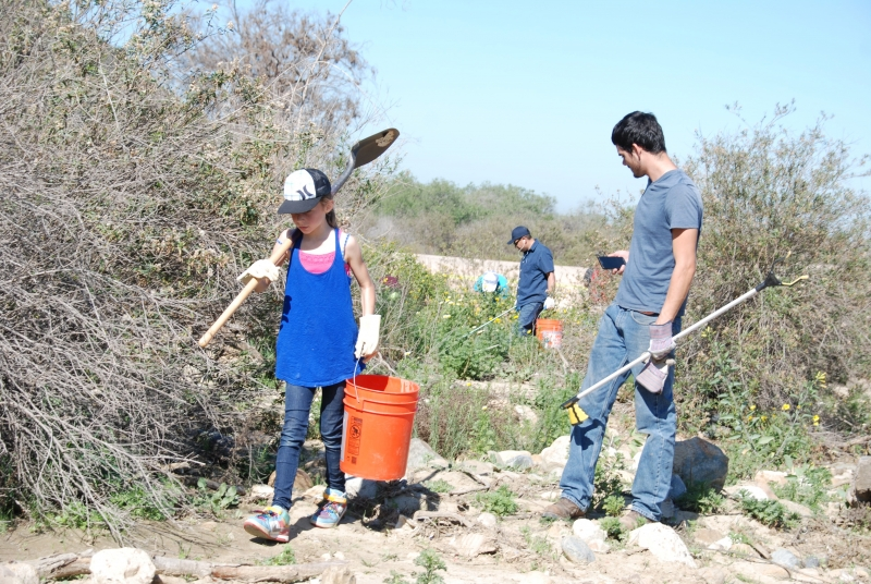 Volunteers removing debris and invasive species from a riparian area of the Tijuana River Valley.