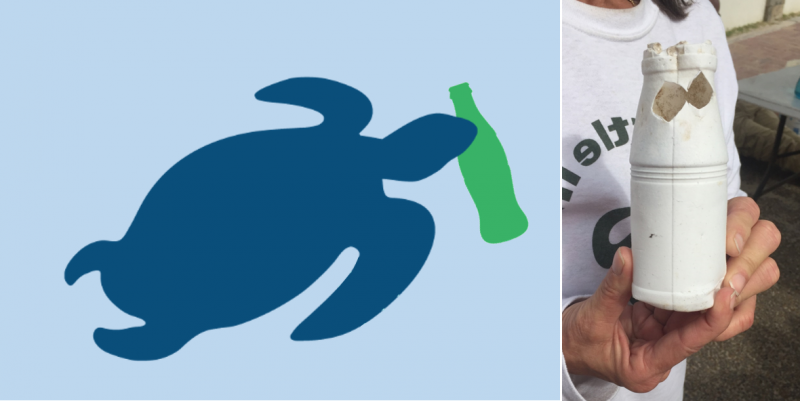 Graphic of a sea turtle taking a bite of a bottle and a photo of a bottle with turtle bites taken out.