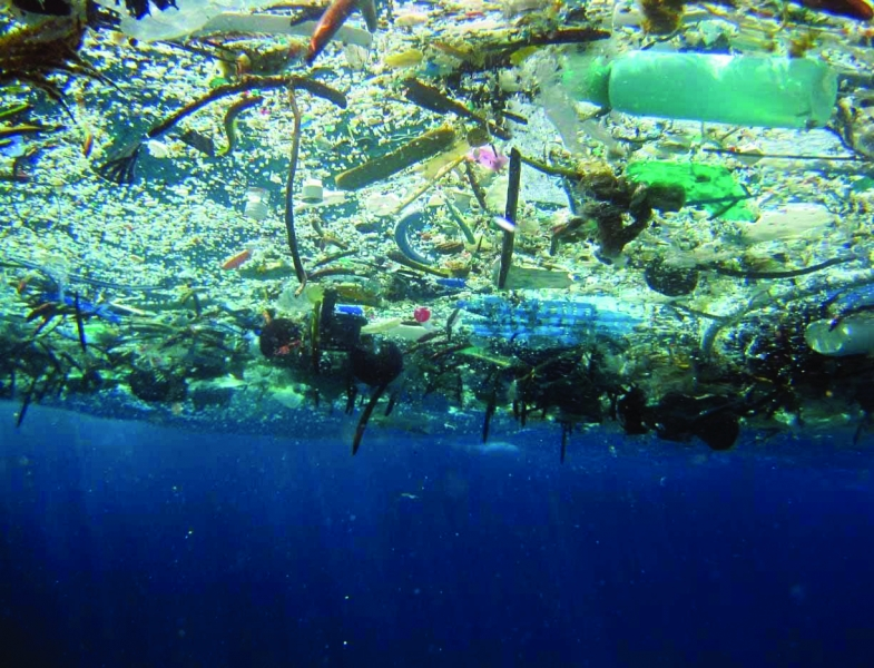 A thick mass of marine debris floating at the surface of the water.