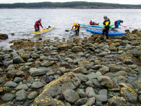 Volunteers arriving on a rocky shoreline with kayaks.