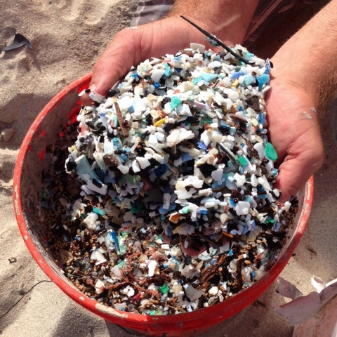 A bucket of microplastics with two hands holding a pile of microplastic over the bucket.