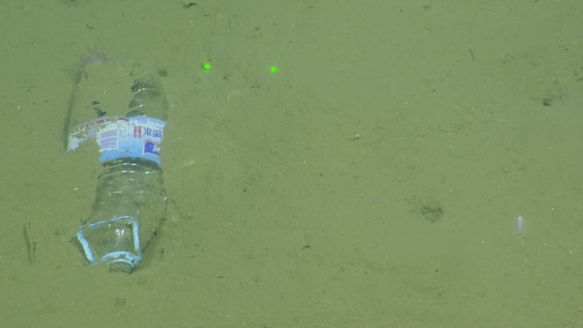 A plastic bottle on the bottom of the deep sea floor.