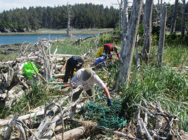 Volunteers picking up debris from a rugged coastline.