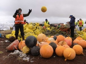 Five people sort large, round buoys into piles at a landfill in Alaska.