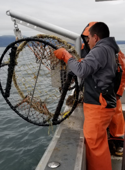 Two removal team members lift a derelict crab pot out of the ocean.