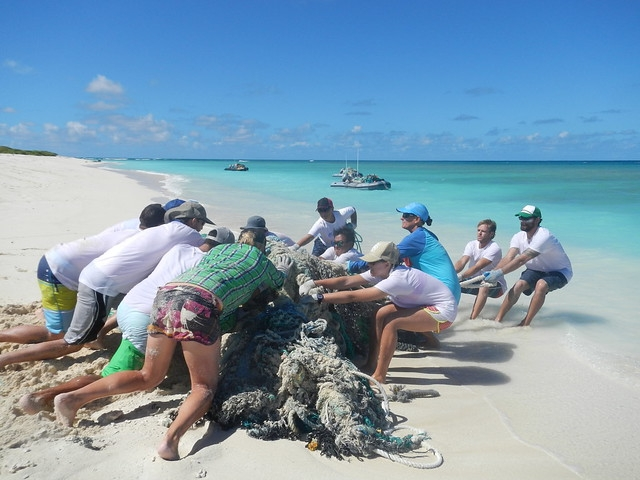 The marine debris team works collectively to drag a large conglomerate of nets from the shoreline of Lisianski Island.