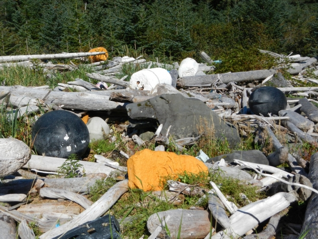 A shoreline located in Alaska is covered with marine debris and fallen logs.
