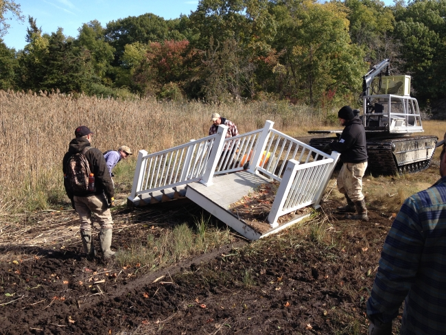 Volunteers moving a staircase from a marsh.