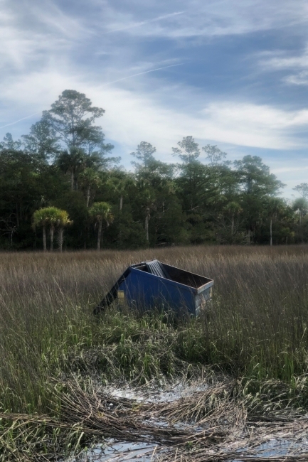 A dumpster submerged in a marsh.