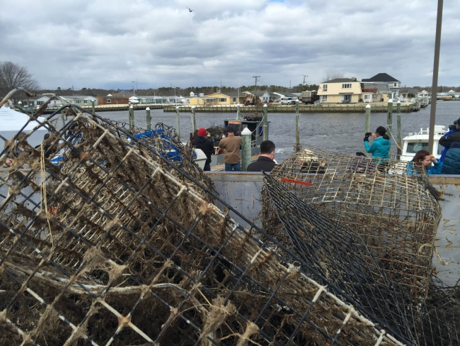 Event attendees observing a boat loaded with retrieved derelict crab pots.