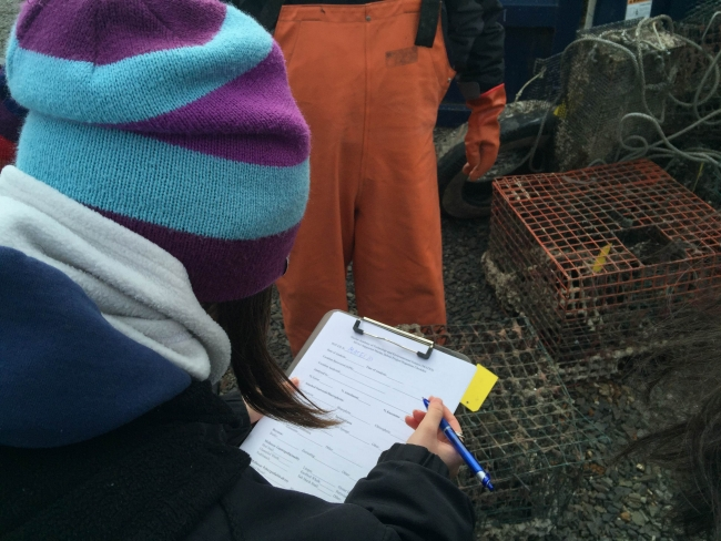 Students record data on a clipboard while observing a derelict crab pot.