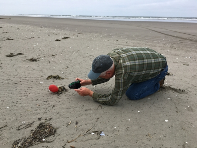A person stoops on hands and knees to take a picture of a balloon on a beach located in Washington state.