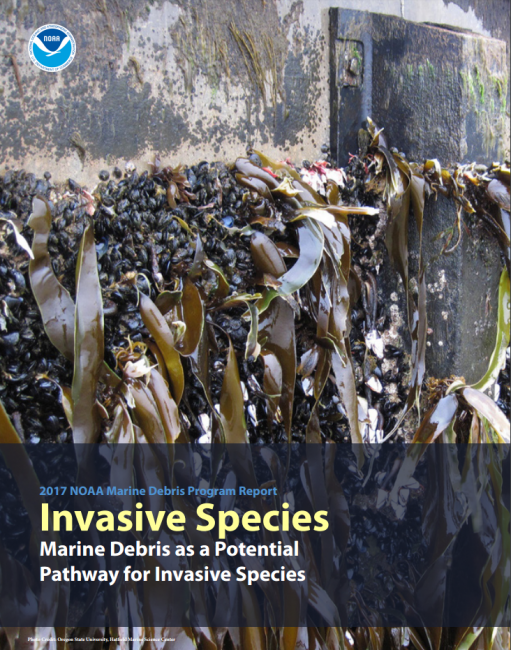 Cover of the Invasive Species: Marine Debris as a Potential Pathway for Invasive Species report.