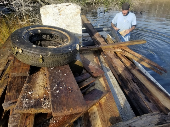 A field worker collects a large amount of marine debris including pieces of docks and a tire.