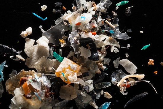 A closeup photograph of microplastic debris.