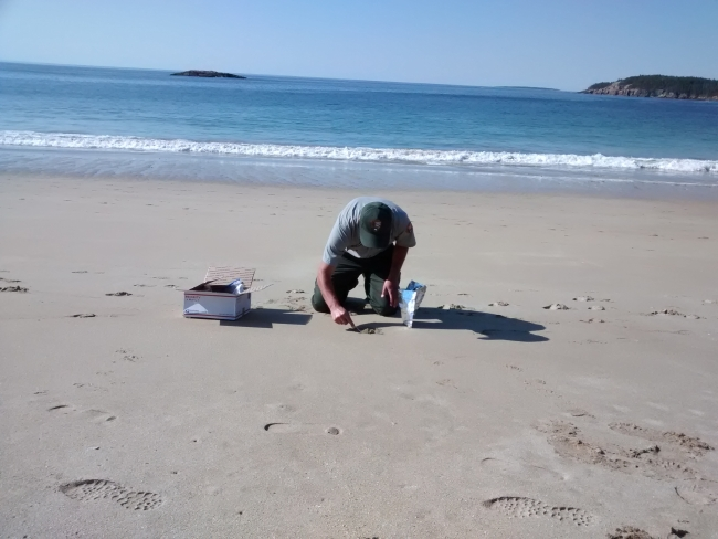 A person taking a sand sample on a beach.