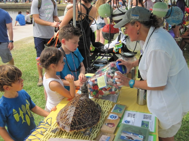At a public outreach day, Coastal Cleanup Corporation volunteers educate the public about the negative impacts of marine debris on sea turtles and other wildlife.