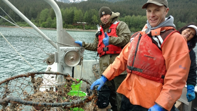 Two people hauling a derelict crab pot onto a boat.