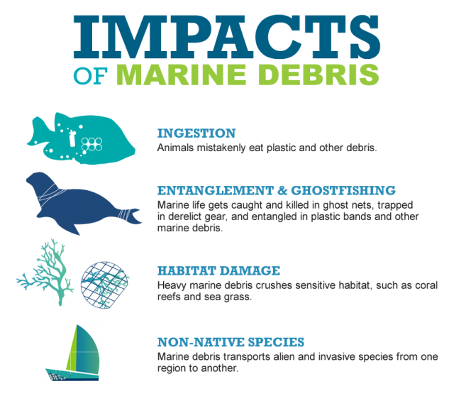 Graphic of the impacts of debris: ingestion, entanglement & ghostfishing, habitat damage, and non-native species.