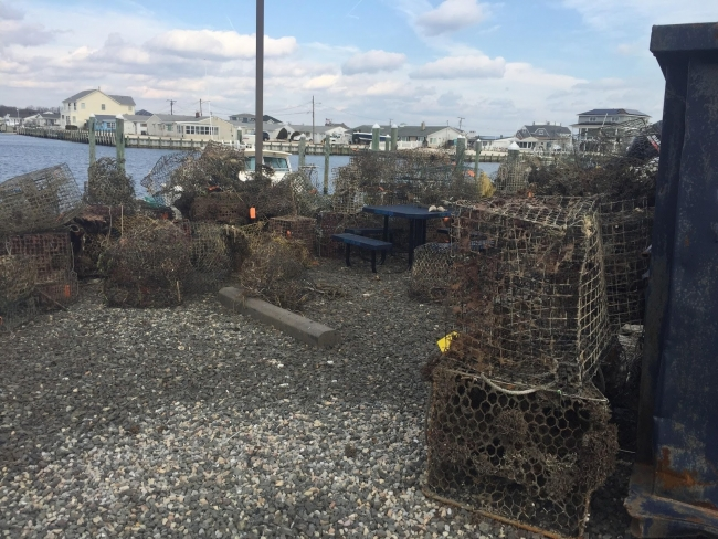 A pile of derelict crab pots on the shore.
