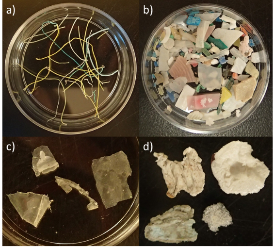 Images of microfibers, micro-fragments, micro-films, and foamed plastic.