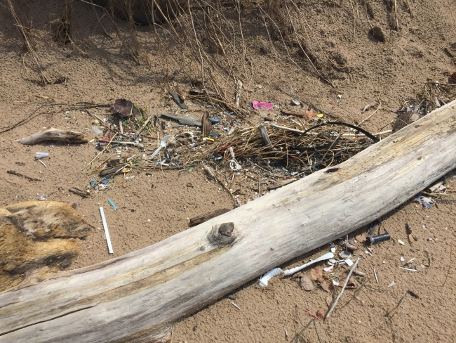 A mess of small plastic debris around a log on a beach.