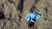 A rubber (latex) glove found on the beach in California.
