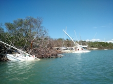 Boats washed ashore by a hurricane.