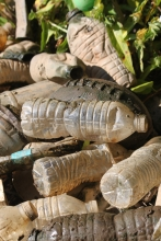 A football amid dirty plastic bottles.