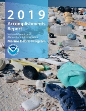 2019 Accomplishments Report Cover