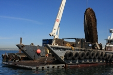A derelict vessel being hauled out of the water with a crane.