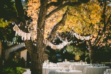 Fabric streamers and string lights on trees.