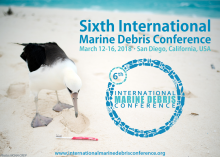 "Banner that reads ""Sixth International Marine Debris Conference"" and a photo of a bird looking at a toothbrush on a beach."