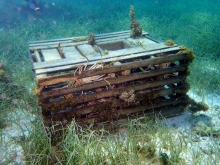 A derelict lobster trap located in Florida.