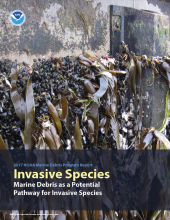 Cover of Marine Debris as a Potential Pathway for Invasive Species report.