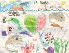 "A child's drawing with the words ""which is better"" showing one side with pollution and debris and the other clean."