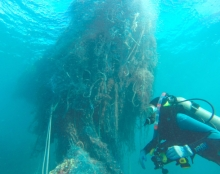 Large net lurking behind a diver.
