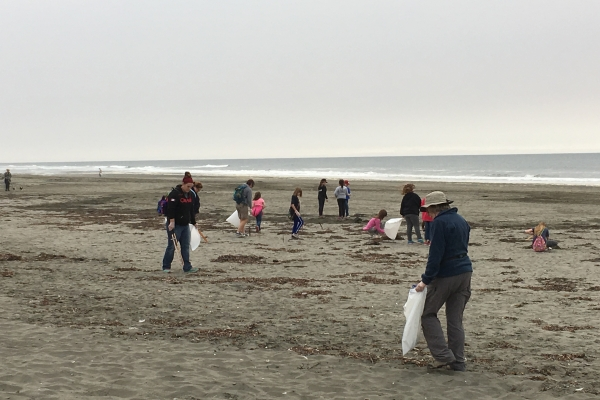 People picking up debris on a beach.