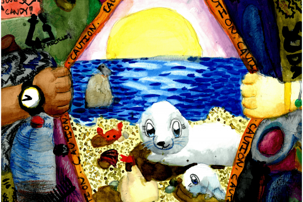 Calendar artwork submission of seals with marine debris.