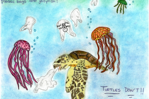Artwork by Ceirra C. (Grade 7, Maryland), winner of the Annual NOAA Marine Debris Program Art Contest
