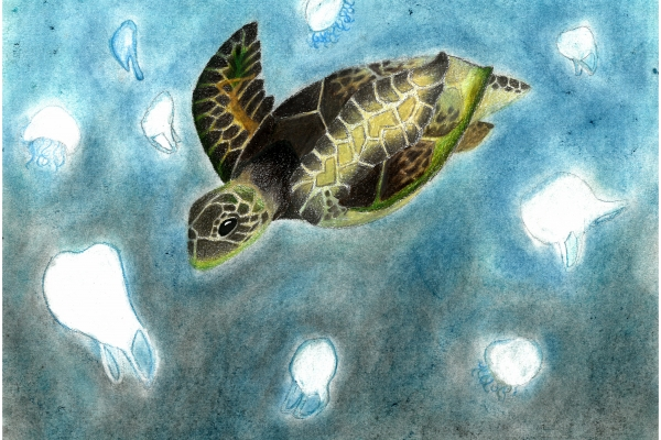 Artwork by Sophie W. (Grade 8, Michigan), winner of the Annual NOAA Marine Debris Program Art Contest