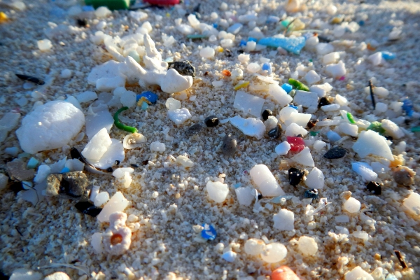 Microplastics in the sand.
